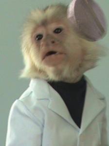 DrMonkeyStein