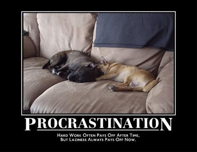 Procrastination definition essay
